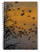 Sandhill Cranes Spiral Notebook