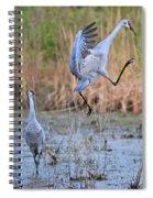 Sandhill Jump Spiral Notebook