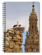 Santo Domingo De La Calzada Spiral Notebook