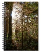 Save The Rain Forests Spiral Notebook