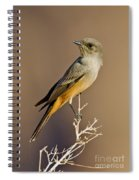 Says Phoebe Spiral Notebook