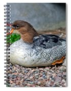 Scaly-sided Merganser Hen Spiral Notebook