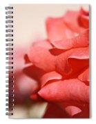 Scarlet Thread Spiral Notebook