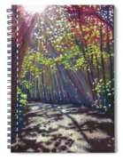 Scattered Light Spiral Notebook