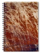 Scratched Wood Texture Spiral Notebook