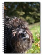 Scruffy Spiral Notebook