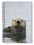 Sea Otter Alaska Spiral Notebook