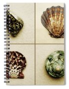 Seashell Composite Spiral Notebook