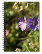 Seasons Finish Spiral Notebook