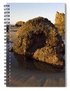 Seastacks Spiral Notebook