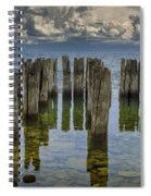 Shore Pilings At Fayette State Park Spiral Notebook