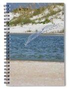Shrimping Spiral Notebook