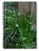Signs Of Spring Spiral Notebook