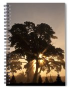 Silhouetted Tree With Sun Rays Spiral Notebook