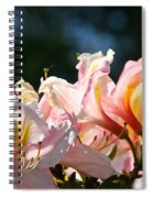 Simply Vibrant Spiral Notebook