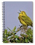 Singing Spiral Notebook