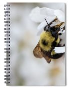 Sipping Nectar Spiral Notebook