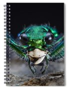 Six-spotted Green Tiger Beetle Spiral Notebook