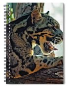 Sleepy Girl Spiral Notebook