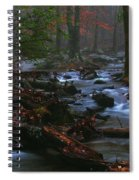 Smoky Mountain Color Spiral Notebook