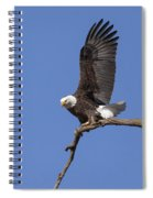 Smooth Landing 3 Spiral Notebook