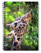 Snack Attack Spiral Notebook
