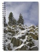 Snow Covered Cliffs And Trees Spiral Notebook