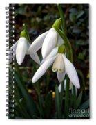 Snowdrops Spiral Notebook