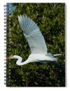 Soaring Snowy Egret Spiral Notebook