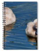 Soft And Fluffy Spiral Notebook