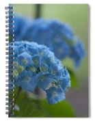 Soft Blue Hydrangea Spiral Notebook