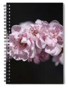 Soft Pink Blossom Spiral Notebook