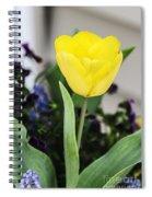 Soft Yellow Spiral Notebook