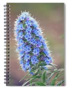 Some Of The Colors Of Spring Spiral Notebook