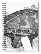 Southern Painted Turtle Spiral Notebook