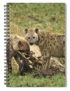 Spotted Hyaena Spiral Notebook
