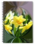 Spring Daffodils   Spiral Notebook