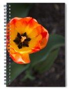 Spring Flowers No. 10 Spiral Notebook