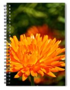 Spring Fresh  Spiral Notebook