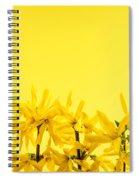 Spring Yellow Forsythia  Spiral Notebook