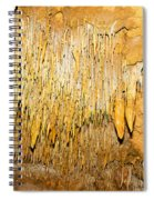 Stalactite Formations In Florida Spiral Notebook