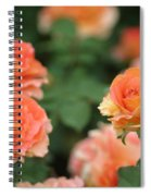 Strike Up The Band Spiral Notebook