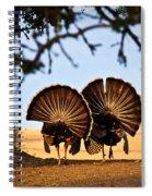 Strutten Their Stuff Spiral Notebook