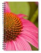 Summer Cone Spiral Notebook