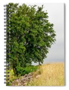 Summer Tree Spiral Notebook