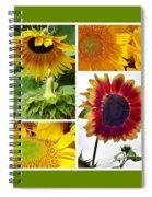 Sunflower Collage   Spiral Notebook