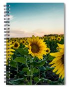 Sister Sunflowers Spiral Notebook