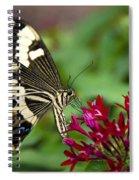 Swallowtail Butterfly  Spiral Notebook