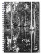Swampland Spiral Notebook