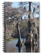 Swampreflection  Spiral Notebook